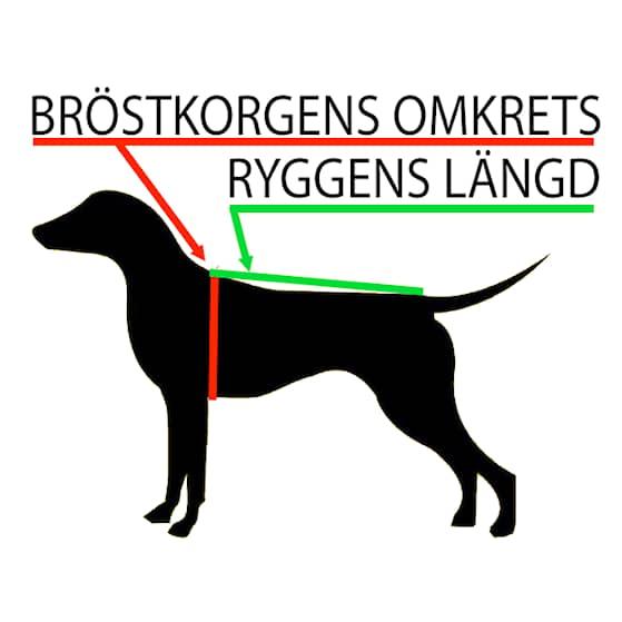 brostkorg_rygglangd_dupaazcc1_grande[1].png