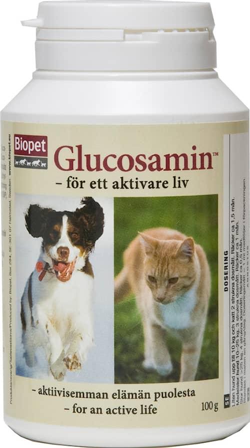 Glucosamin 100g