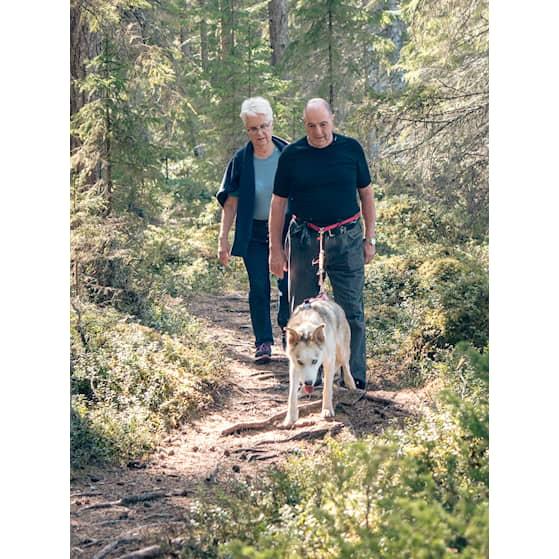 Older active couple - stor (283756).jpg