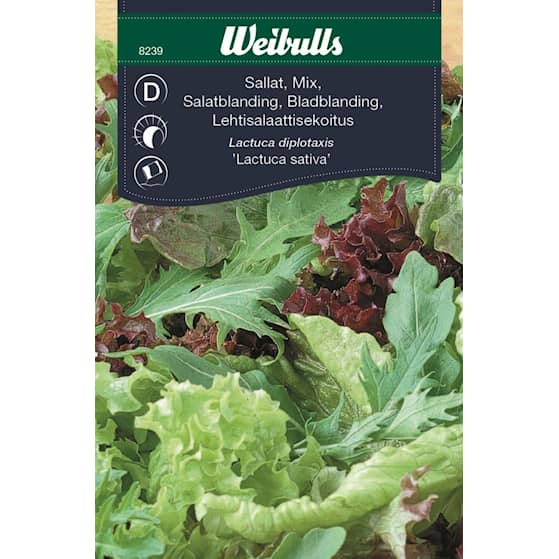 Weibulls Sallat, baby leaf mix