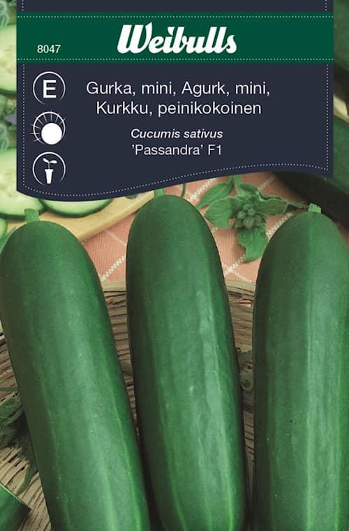 Weibulls Gurka, passandra f1 mini