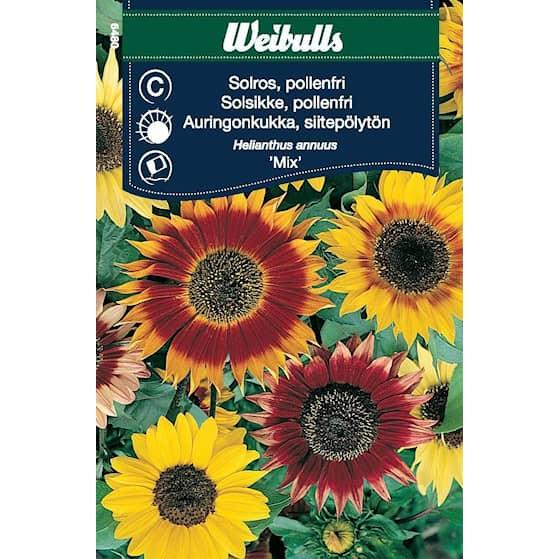 Weibulls Solros pollenfri mix
