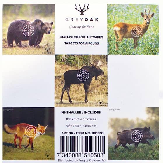 Pergite Måltavla Djurmotiv 14x14 cm 50-pack