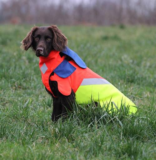 Tuskproof suojaliivi koiralle