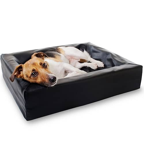 Bia Koiranpeti, musta 45x45