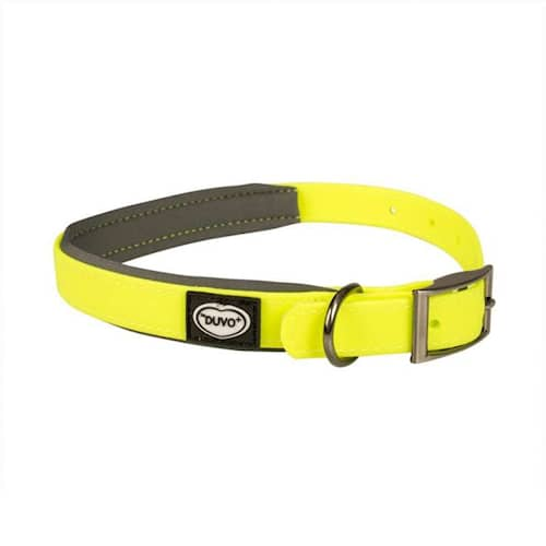 Koiran kaulapanta EXPLOR South 40-65 cm/25 mm neonkeltainen PVC