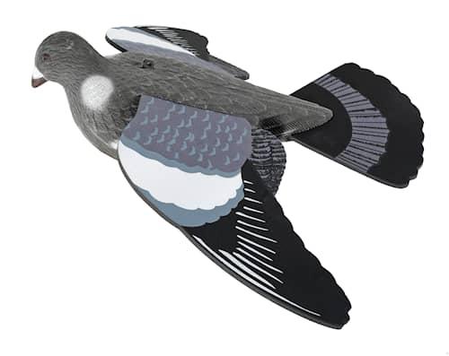 5etta Ringduva bulvan, med vingar