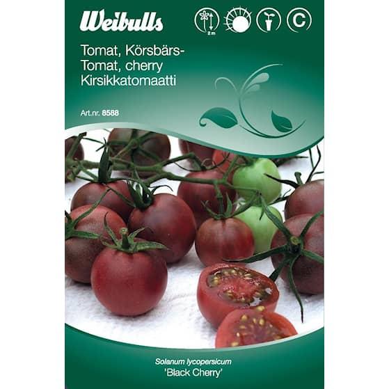 Tomat Black Cherry 8588